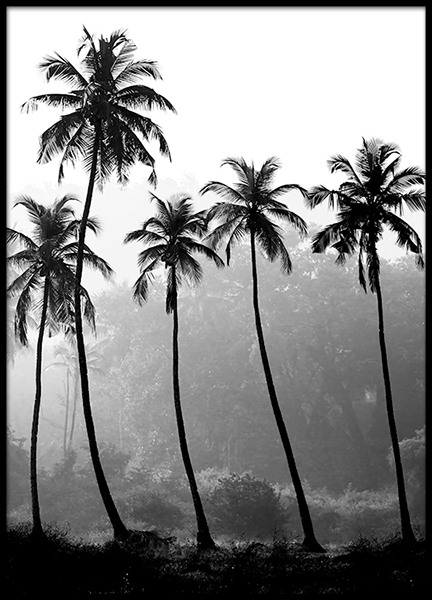 palm trees poster. Black Bedroom Furniture Sets. Home Design Ideas
