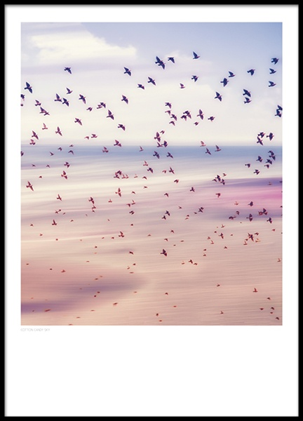 Cotton Candy Sky, Poster in the group Posters & Prints / Nature at Desenio AB (8397)
