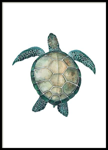 Sea Turtle, Poster in the group Posters & Prints / Insects & animals at Desenio AB (8424)
