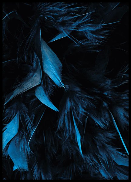 Blue Feathers, Poster in the group Posters & Prints / Photography at Desenio AB (8483)