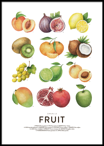 Fruit, Posters in the group Posters & Prints / Kitchen at Desenio AB (8590)