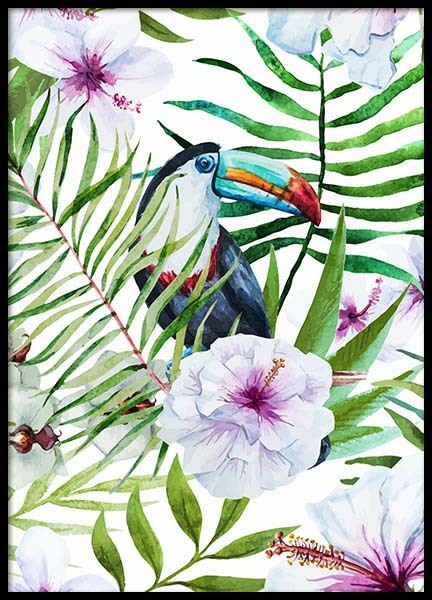 Toucan In Paradise Poster in the group Posters & Prints / Photography at Desenio AB (8777)