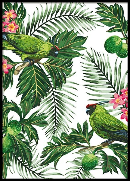 Parrots In Paradise Poster in the group Posters & Prints / Art prints at Desenio AB (8780)