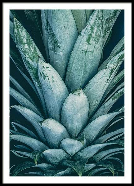 Pineapple Crown Poster
