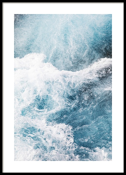 Ocean Life Poster in the group Posters & Prints / Photography at Desenio AB (co0049)