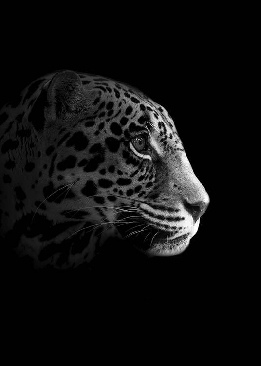 Leopard From Side Poster / Black & white at Desenio AB (10494)