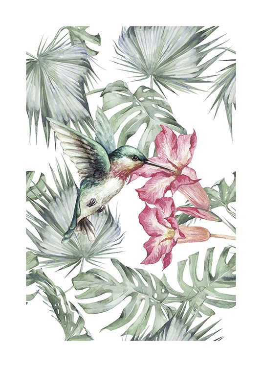 Tropical Bird No1 Poster / Insects & animals at Desenio AB (10648)