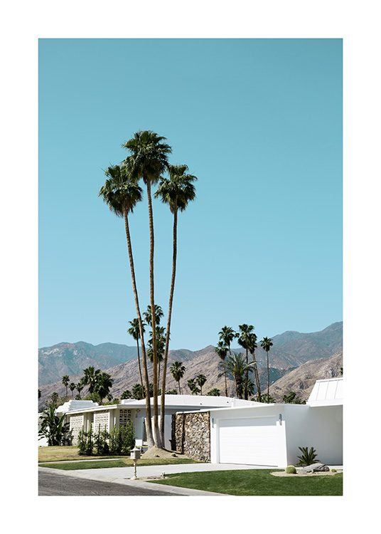Street of Palm Springs Poster / 27 ½ x 39 ⅜ in | 70x100 cm at Desenio AB (10790)
