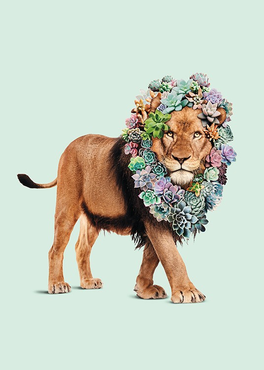 Succulent Lion Poster / Kids posters at Desenio AB (11021)