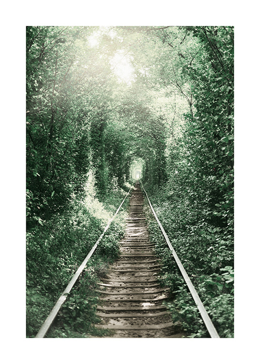 Forest Tunnel Poster / Nature at Desenio AB (11265)