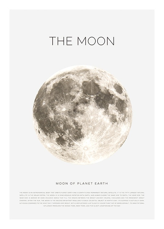 The Moon Poster / Kids posters at Desenio AB (11441)