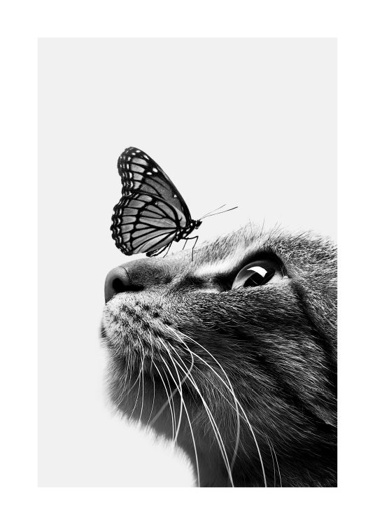 Butterfly Cat Poster / Kids posters at Desenio AB (11774)