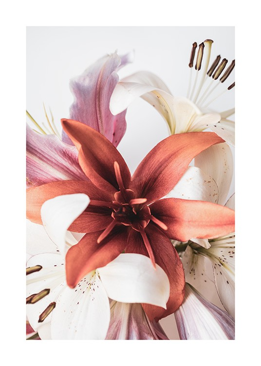 Lilies No2 Poster / Photography at Desenio AB (12107)