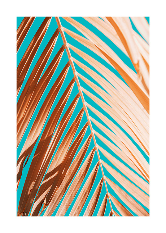 Palm Leaf Against Blue Sky Poster / Photography at Desenio AB (12414)