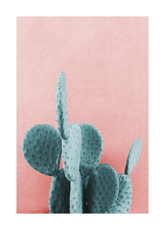 Mint Cactus Poster / Photography at Desenio AB (12852)