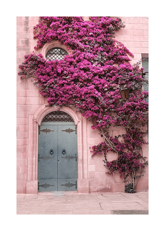 Photograph of light pink wall covered in dark pink flowers with a blue door