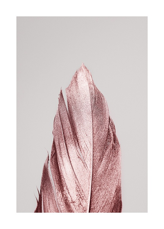 - Photograph with a feather covered in pink glitter on a grey background