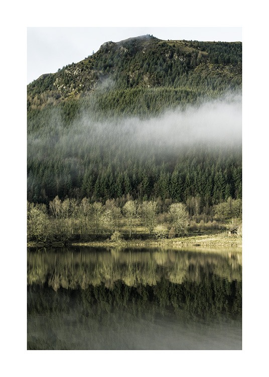 - Photograph of forest landscape in green covered in fog reflecting in a lake