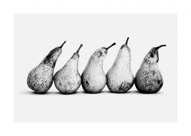 - Black and white photograph of five pears in a row