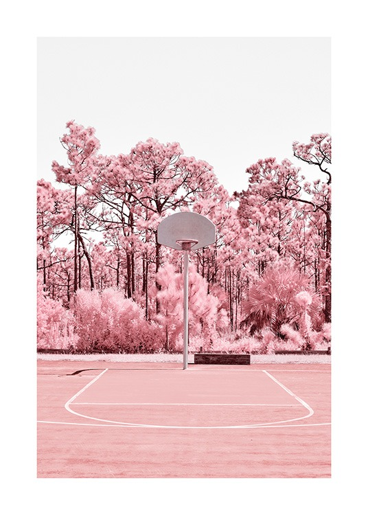 - Photograph of pink trees behind a pink basket court