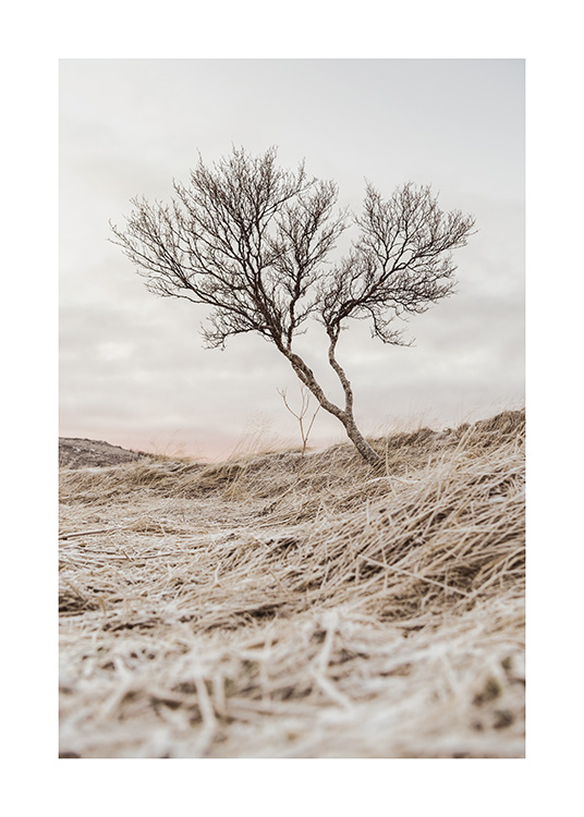 Bare Tree Poster / Nature at Desenio AB (13679)
