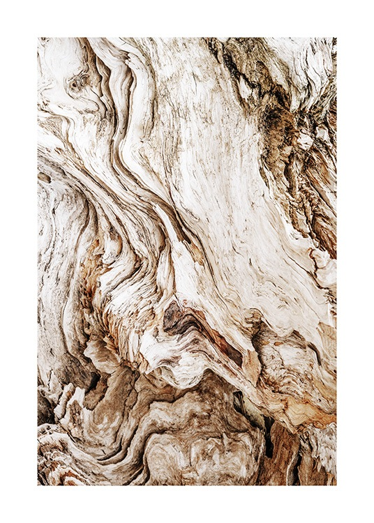 Driftwood Poster / Photography at Desenio AB (13831)