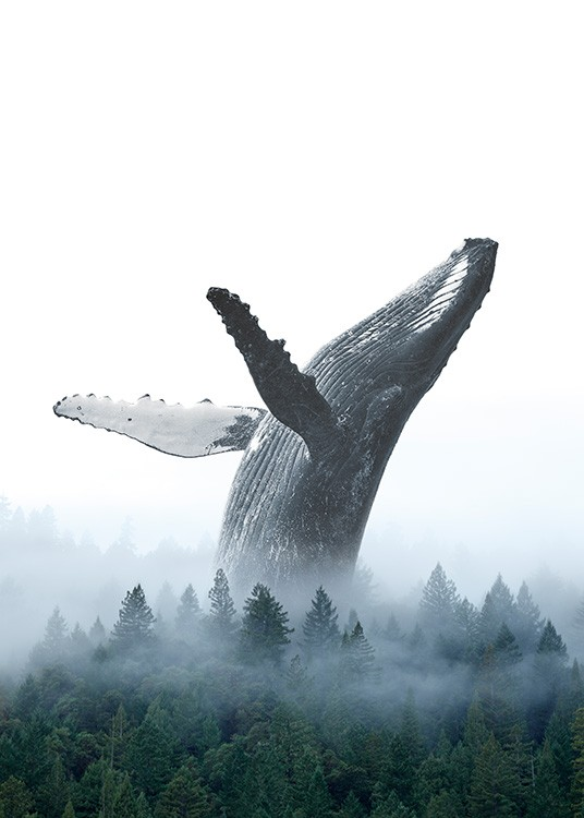 - Photo art print with a whale throwing itself backwards in a forest covered in fog
