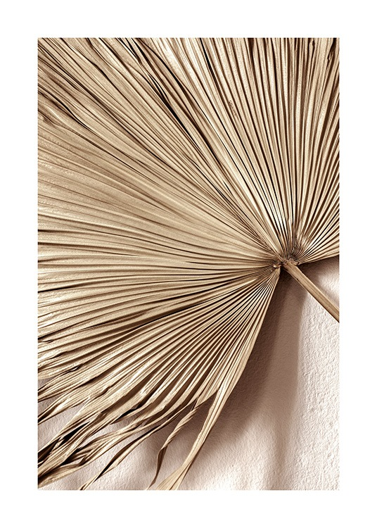 – Photograph of a fan palm leaf in gold with a beige wall behind it