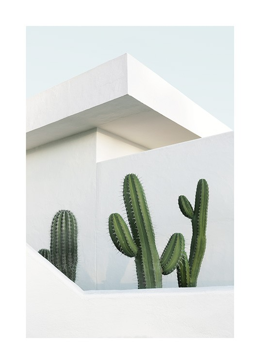 – Photograph of a white building behind three green cacti
