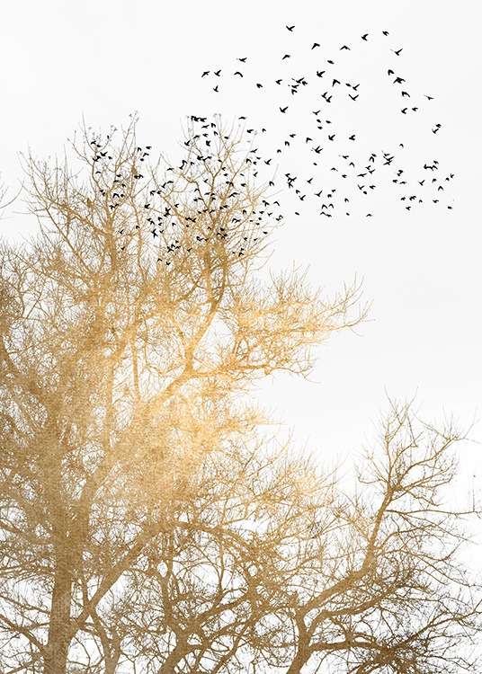 – Graphic illustration of black birds and a golden tree on a white background