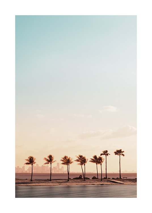 – Photograph of a beach in Miami with palm trees in the sunset