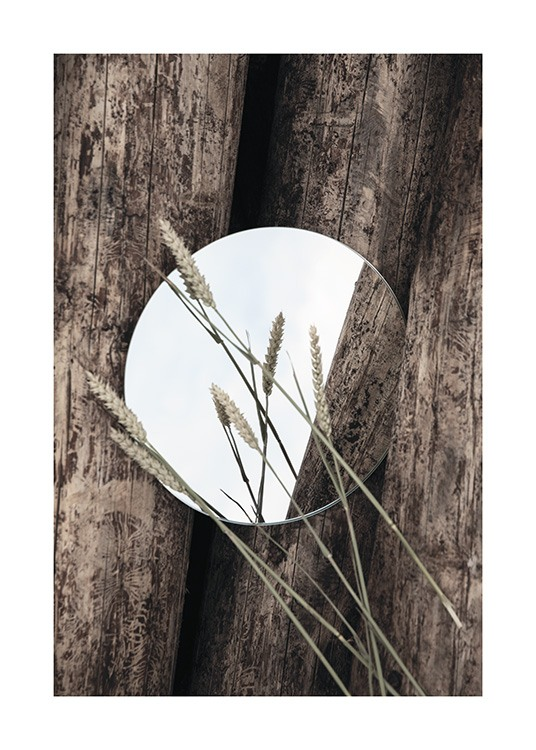 – Photograph of a round mirror and wheat on wooden logs