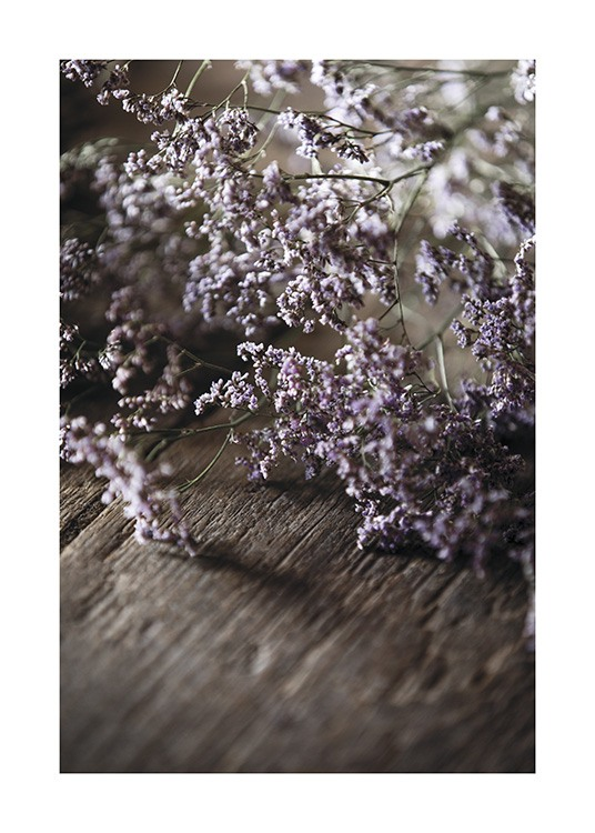 – Photograph with close up of small flowers in purple, laying on top of a wooden table