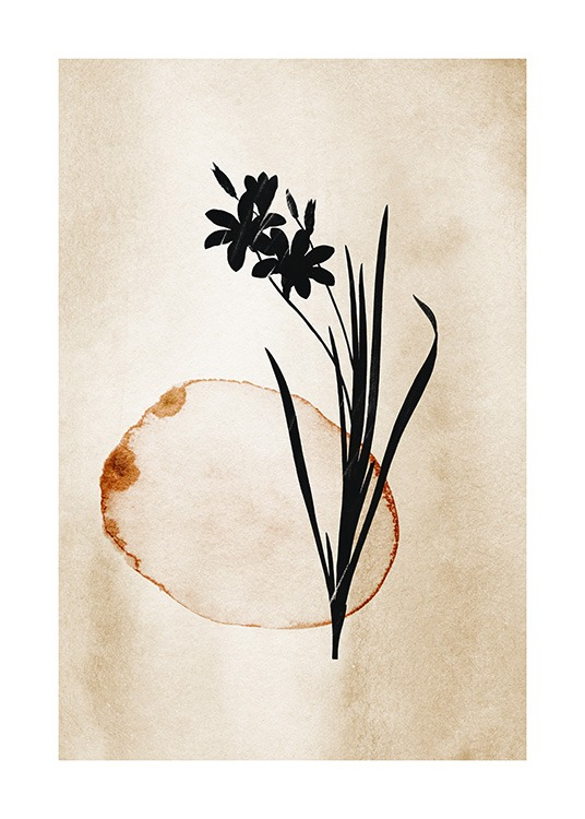 – Painting in watercolor of a black flower with leaves and a brown circle on a beige background