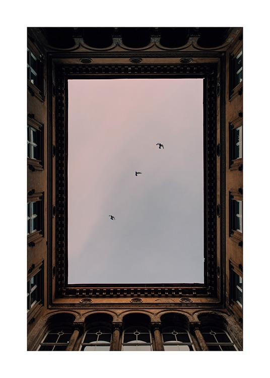 – Photograph of birds in front of a pastel pink sky seen through an open ceiling in a building