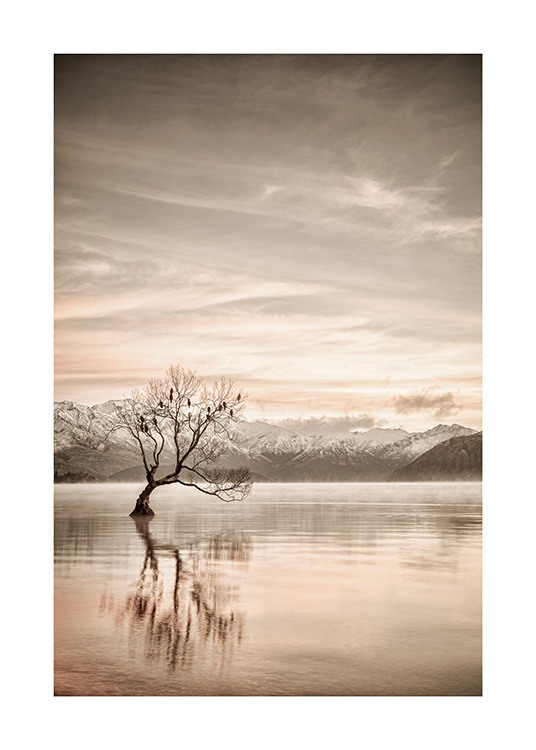 – Photograph of a still lake with a tree in it and mountains in the background