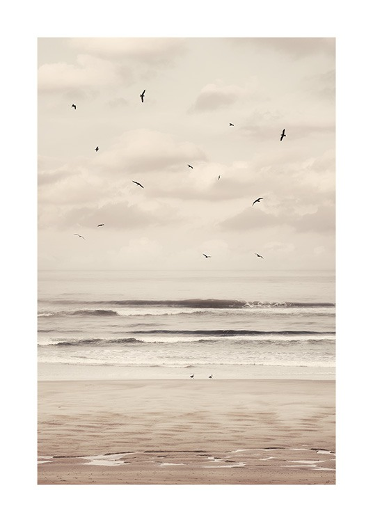 – Photograph of a beach and ocean with black birds flying in front of a cloudy sky