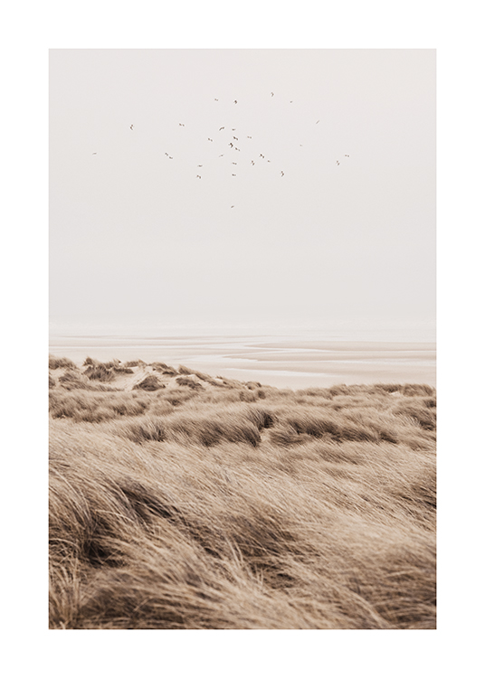 – Photograph of birds flying over sand dunes with grass on them