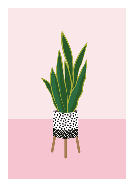 – Illustration of a plant against a pink background, in a dotted pot with legs