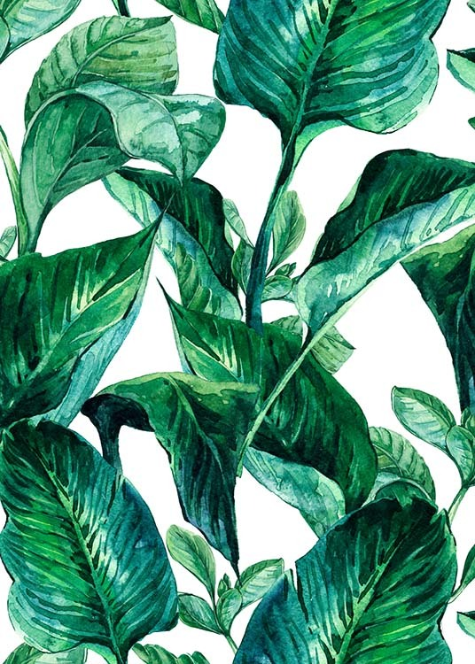 Green Leaves Pattern Poster / Art prints at Desenio AB (2288)
