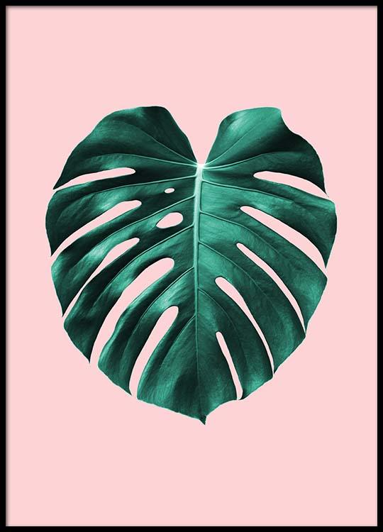 Monstera On Pink Poster