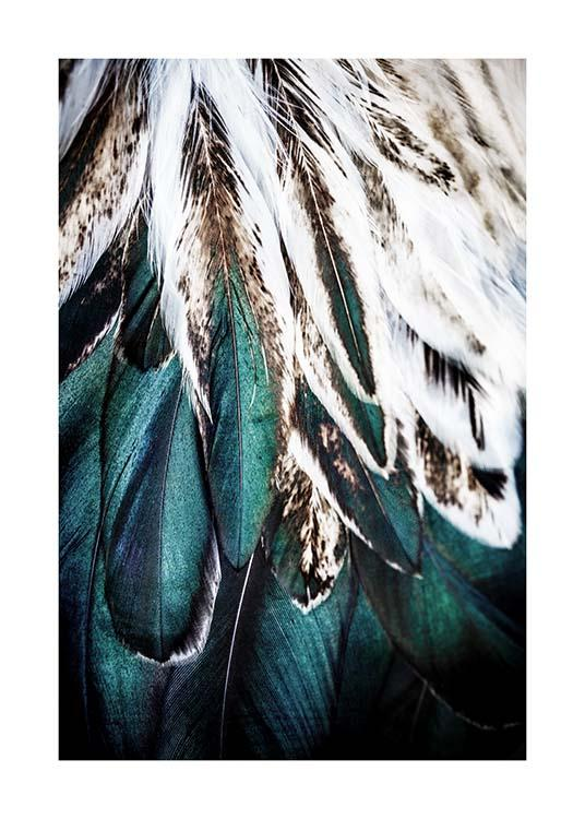 Green Feathers Poster / Photography at Desenio AB (2732)