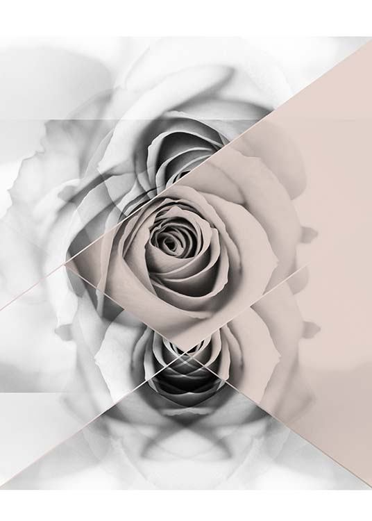 Graphic Rose Poster / Graphical at Desenio AB (2790)