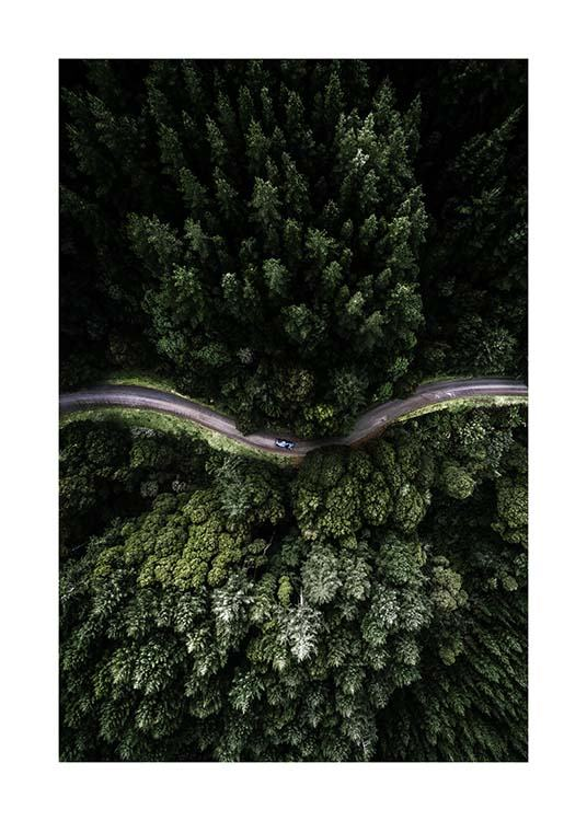 Forest Road Poster / Nature at Desenio AB (3575)
