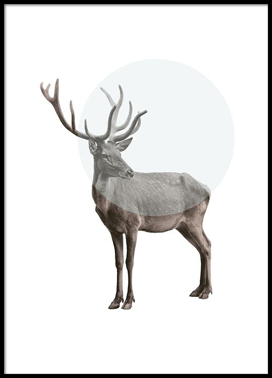 Graphic poster with reindeer, modern print