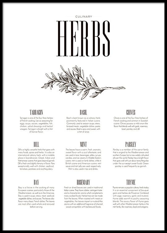 Poster for kitchen with herbs, print for kitchen