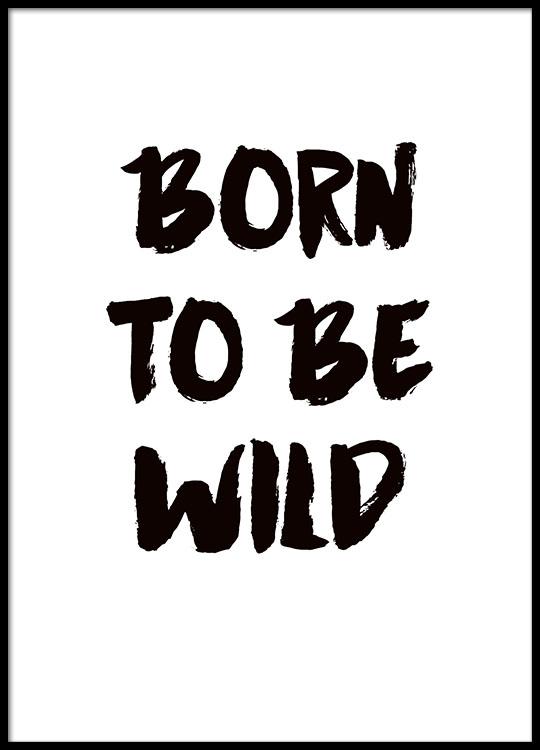 poster with text  u00e2 u20ac u02dcborn to be wild u00e2 u20ac u2122 in black and white  prints online