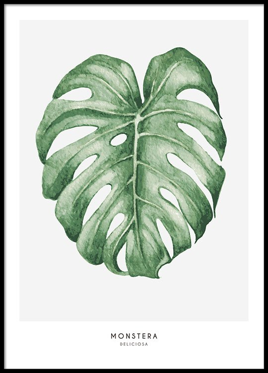 Botanical print with plant patterns cheap prints with plants