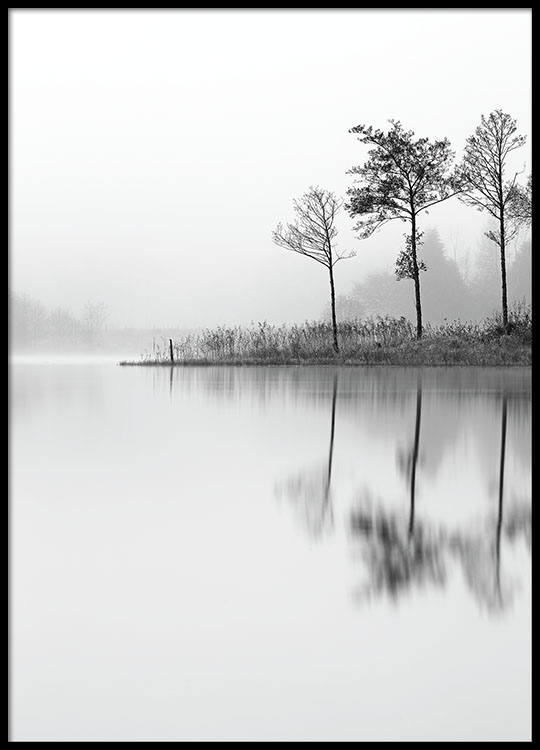 Black and white photo prints and prints with nature online