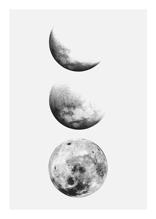 Posters of the moon | ...
